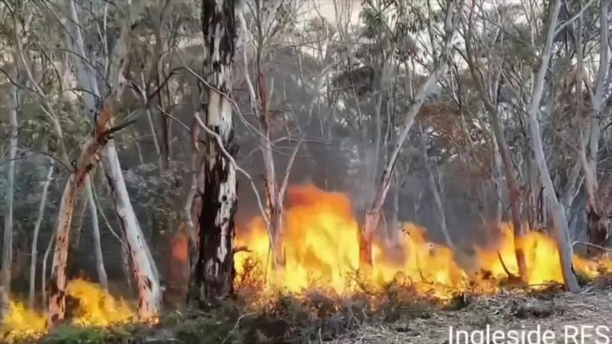 Incendios siguen arrasando el sureste de Australia