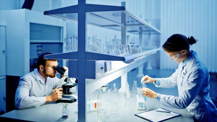 Prueban que el trasplante de células madre de nueva generación reduce significativamente las complicaciones en pacientes de cáncer en la sangre.