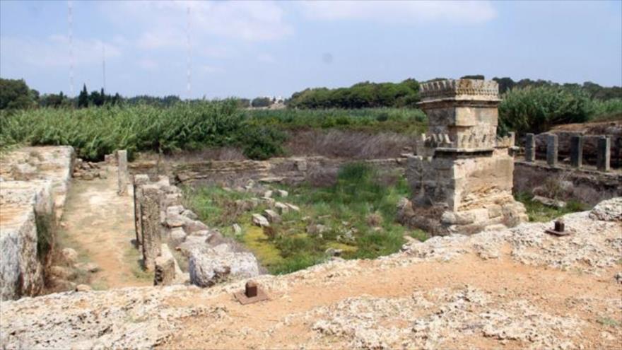 Sitio arqueológico hallado en Tartus, en Siria (Foto: SANA)