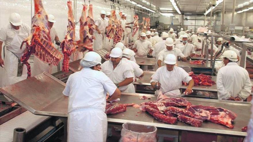 Trabajadores de la industria cárnica de Brasil.