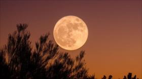 No se pierda la Superluna de nieve que se verá este fin de semana