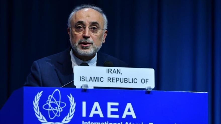 El Jefe de la Organización de Energía Atómica de Irán (AEOI), Ali Akbar Salehi, habla en una conferencia de la AIEA en Viena, 17 de septiembre de 2018.