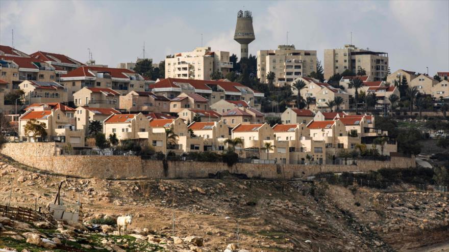 Vista general del asentamiento de Maale Adumim, en la Cisjordania ocupada, 28 de enero de 2020. (Foto: AFP)
