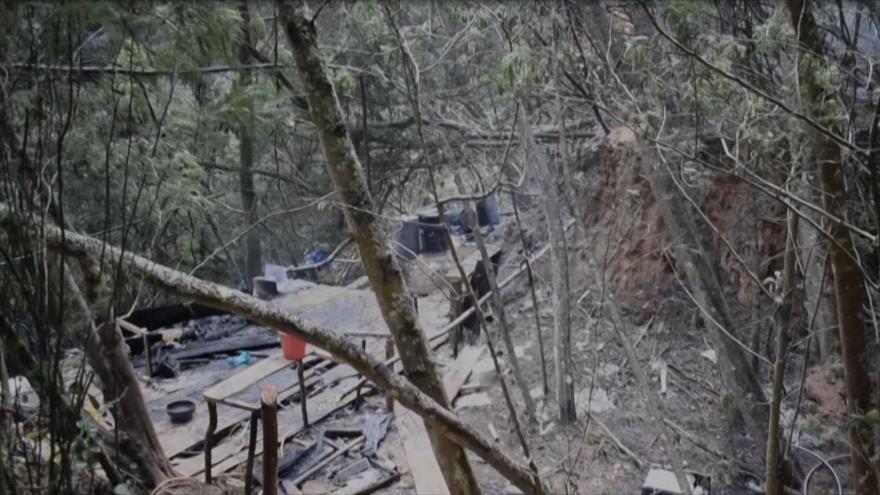 Vídeo: Hallan complejo cocalero en finca de embajador de Colombia