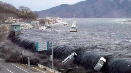 Vídeo: Así fue impacto del sismo más potente de historia de Japón
