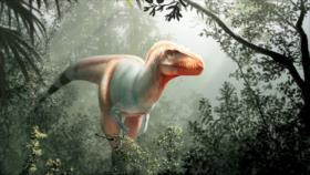 Científicos hallan 5 nuevas especies de dinosaurios en último año