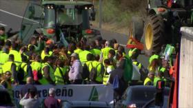 Agricultores de España protestan por bajo precio de sus productos