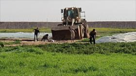 Vídeo: Israel mata a un palestino y deshonra su cuerpo en Gaza