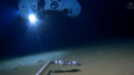Científicos estudian la vida en profundidades del océano Índico