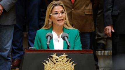"""""""Áñez viola la Constitución al restituir al ministro de Defensa"""""""