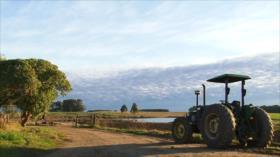 Autoridades de Uruguay declaran emergencia agropecuaria