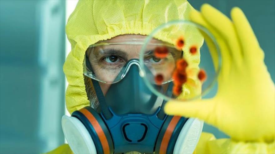 Un científico estadounidense observa una placa de Petri con cepas de un microorganimso.