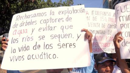 Indígenas y productores exigen atención ambiental en Panamá