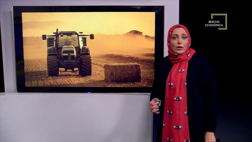 Brecha Económica: Crisis agrícola en europa