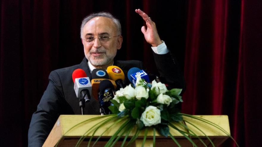 El jefe de la Organización de Energía Atómica de Irán (OEAI), Ali Akbar Salehi, durante un acto en Teherán, la capital. (Foto: Mehr News)