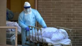 Creciente número de muertos abruma las morgues de Nueva York