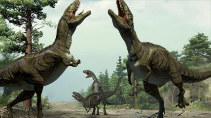 Vídeo: Recrean en 3D cráneo de uno de los dinosaurios más antiguos