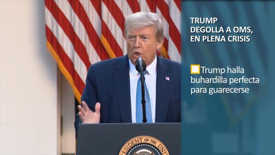 PoliMedios: Trump degolla a la OMS en plena crisis