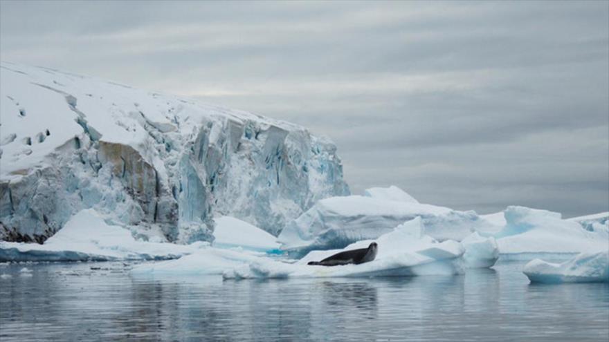 Imágenes impactantes: La Antártida se derrite por calentamiento global | HISPANTV
