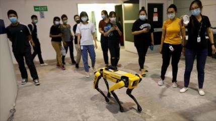 Vídeo: Legión de robots para combatir coronavirus en Singapur