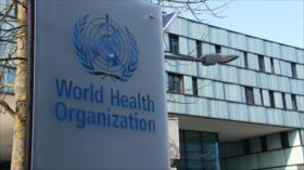 Advertencia a AIEA. Protestas en Irak. Coronavirus en el mundo - Boletín: 12:30 - 05/07/2020
