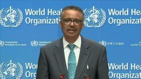 La OMS intenta coordinar una respuesta a la pandemia