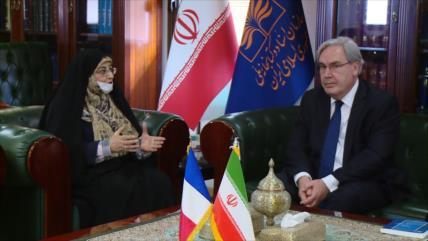 Irán y Francia abogan por desarrollar las cooperaciones culturales