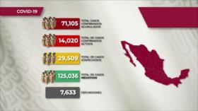 Número de muertos de coronavirus llega a 8 mil personas en México