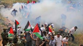 """Liga Árabe insiste: Anexión de Cisjordania es """"crimen de guerra"""""""