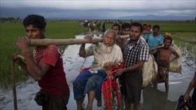 Miles de Rohingya huyen de una operación de limpieza del Ejército