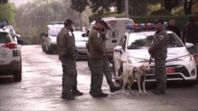 Dentro de Israel: Pedófilos prófugos