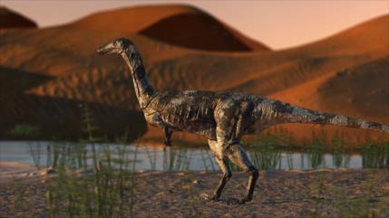 Hallan nueva especie de dinosaurio de hace 115 millones de años