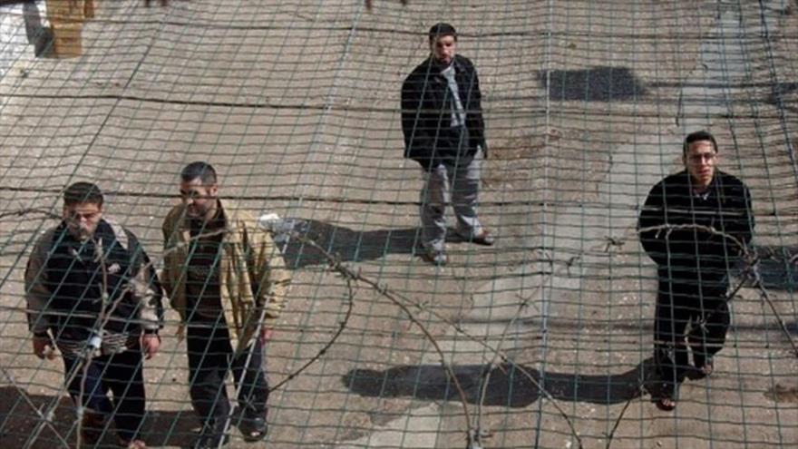 "Palestina avisa que presos en cárceles israelíes son su ""línea roja"" | HISPANTV"