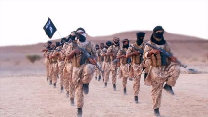 Yemen: Arabia Saudí recluta muchos mercenarios de Daesh y Al-Qaeda