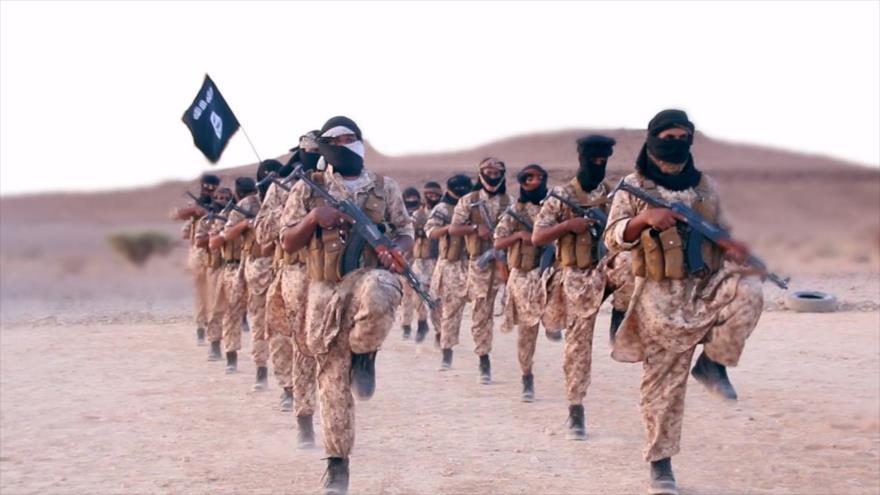 Yemen: Arabia Saudí recluta muchos mercenarios de Daesh y Al-Qaeda   HISPANTV