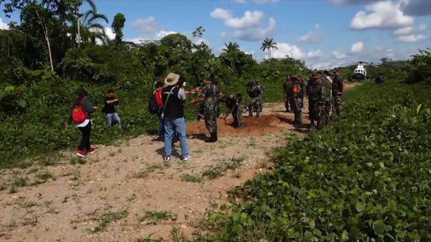 Perú niega reporte de EEUU que señala aumento de producción de coca