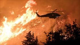Incendio forestal en Los Ángeles consume miles de hectáreas
