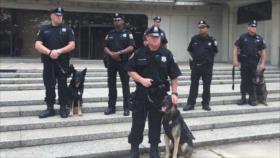 """Vídeo: Policía manda a perro a """"atacar"""" a negro arrodillado en EEUU"""