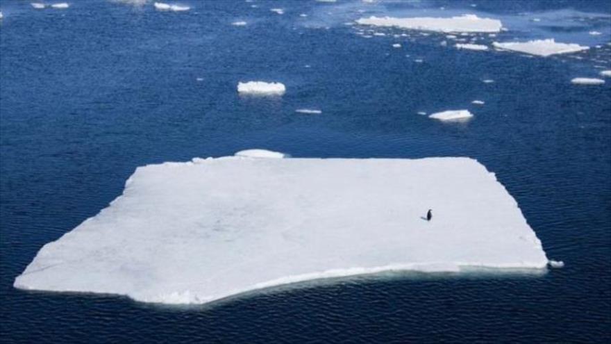 Un estudio advierte del aumento drástico de la velocidad a la que se derrite el hielo de los glaciares de Groenlandia y la Antártida.