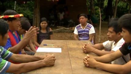 Presentan demanda de amparo para proteger indígenas en Aislamiento