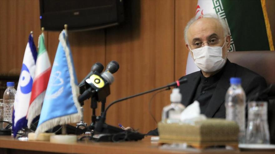 El jefe de la Organización de Energía Atómica de Irán (OEAI), Ali Akbar Salehi.