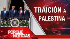 El Porqué de las Noticias: Traición a Palestina. Crisis de los refugiados. Perdón de las FARC