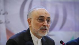 Irán: La AIEA no pedirá más acceso a las actividades nucleares
