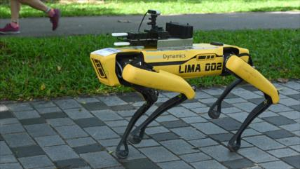 Un perro robot patrullando calles causa revuelo en redes sociales