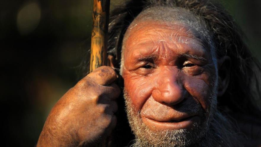 Un estudio revela que los infectados por el nuevo coronavirus que tienen el ADN de Neandertal, son más susceptibles de sufrir complicaciones graves.