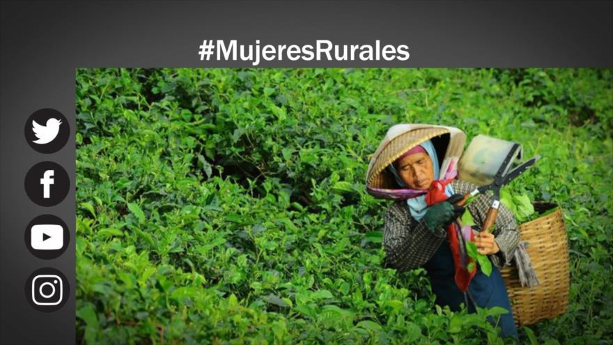 Etiquetaje: Mujeres rurales