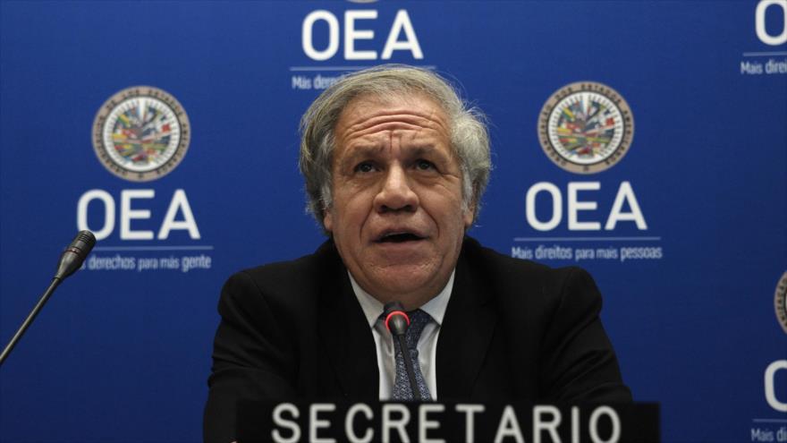 El secretario general de la OEA, Luis Almagro, en una conferencia de prensa en la sede del ente en Washington, 19 de diciembre de 2019. (Foto: AFP)