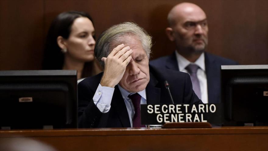 El Secretario General de la OEA, Luis Almagro (Centro), durante una reunión en Washington, EE.UU., 12 de noviembre de 2019. (Foto: AFP)