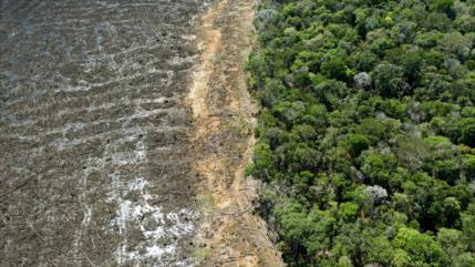EEUU, cómplice en abuso a indígenas y deforestación de la Amazonía