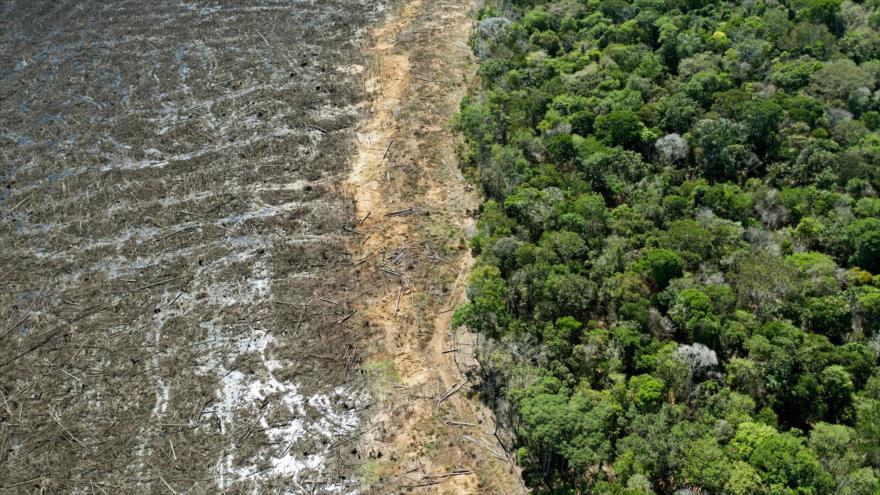 Una foto de un área deforestada en el estado de Mato Grosso, Brasil, 7 de agosto de 2020. (Foto: AFP)